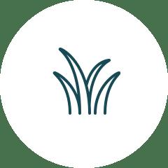 変化する庭づくり